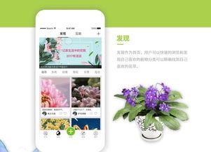 养花哪个app好的