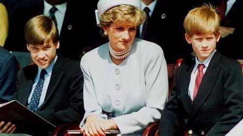 戴安娜与两个儿子