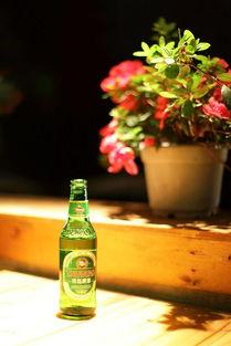 养花可以交啤酒吗