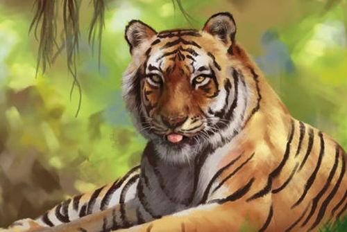 74属虎的命理不能缺水是吗
