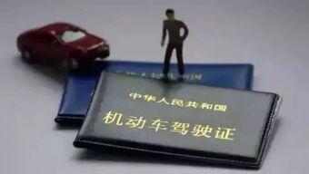 人大代表建议 取消机动车驾驶证
