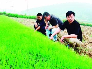 赵亚夫在有机产品种植区指导生产。