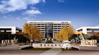重庆科技学院有哪些好的专业