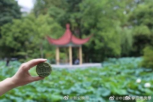 中国科大教科书包装月饼祝吃了后不挂科