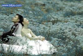PS调出蓝色花丛中的婚片照片