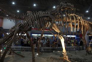 北京 博物馆之夜 拉开帷幕
