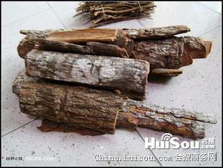 安哥拉树皮(安哥拉树皮泡酒方法)