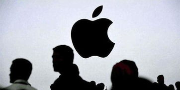 据国外媒体报道,苹果