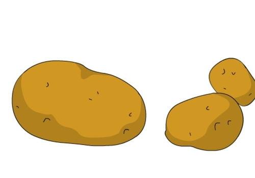滚来滚去的小土豆的范文