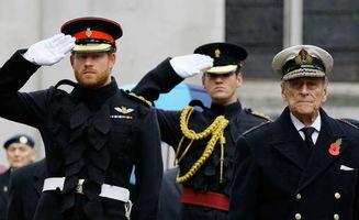 英王室成员缅怀阵亡士兵哈里王子戎装亮相