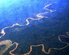 写描写黄河的诗句古诗大全