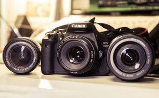 单反相机排名(数码相机什么牌子好)