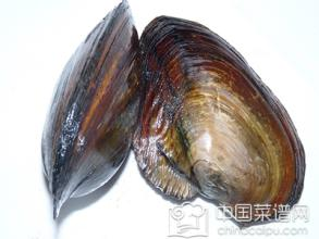 河蚌的做法及前期处理