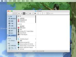 mac电脑小知识