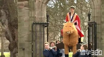 剑桥学生 自杀星期日 花式作死,只因期末考太虐