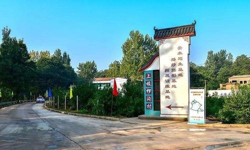 王建宽的日常工作之一,便是担任村级河长,负责梭椤河3.5公里的河道管理.