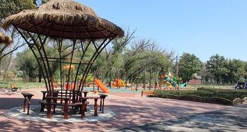 上海浦江郊野公园游玩攻略